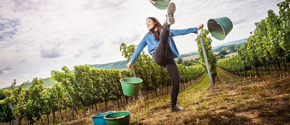 Weingut Bretz